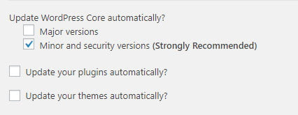Advanced Automatic Updates plugin settings
