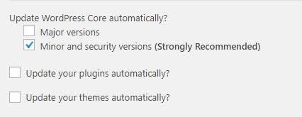 Advanced Automatic Updates plugin settings