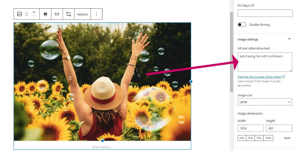 image block settings showing ALT text