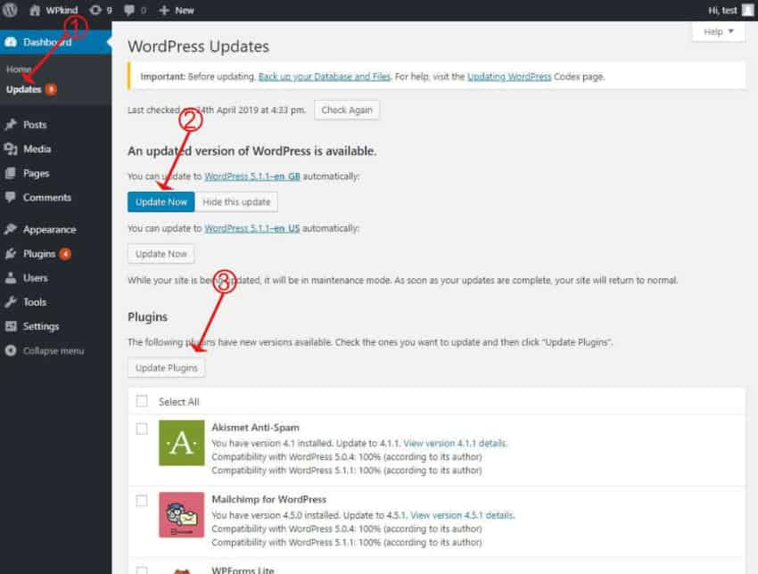 Update WordPress and plugins